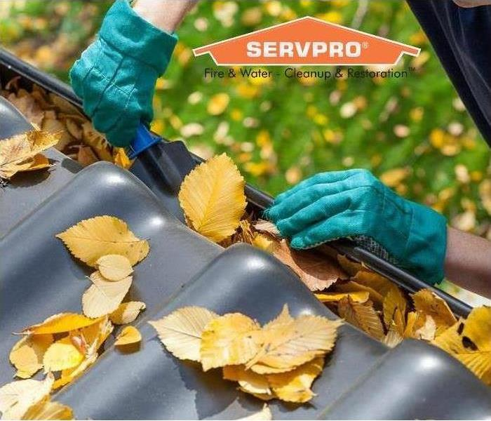 General Spring Home Maintenance Tips