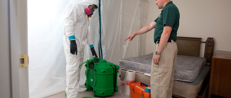 Norcross, GA mold removal process